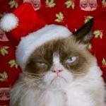 Monoteístas e a Dificuldade do Natal