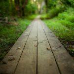 Como Começar um Novo Caminho